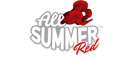 All Summer Red